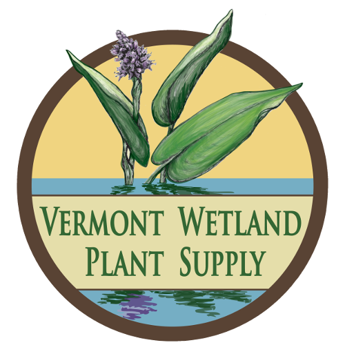 Vermont Wetland Plant Supply